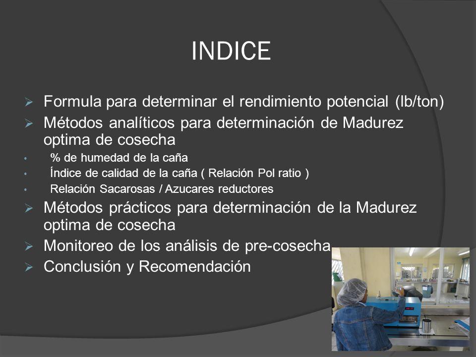 INDICE Formula para determinar el rendimiento potencial (lb/ton) Métodos analíticos para determinación de Madurez optima de cosecha % de humedad de la