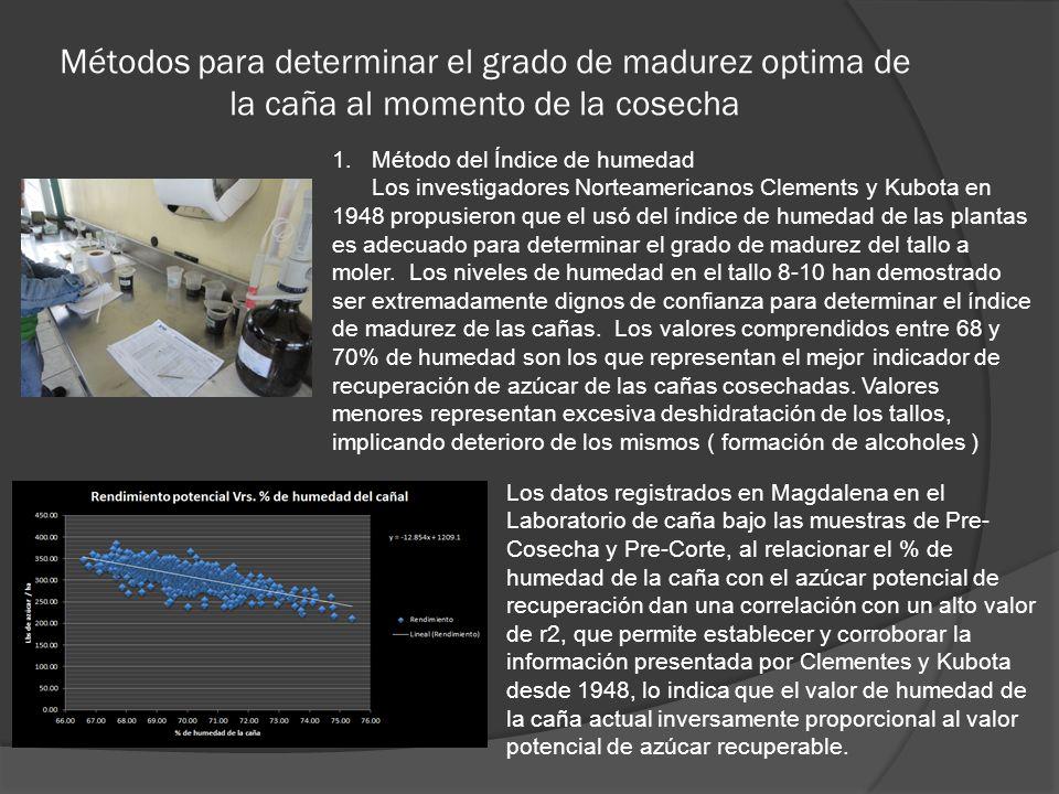 Métodos para determinar el grado de madurez optima de la caña al momento de la cosecha 1.Método del Índice de humedad Los investigadores Norteamerican