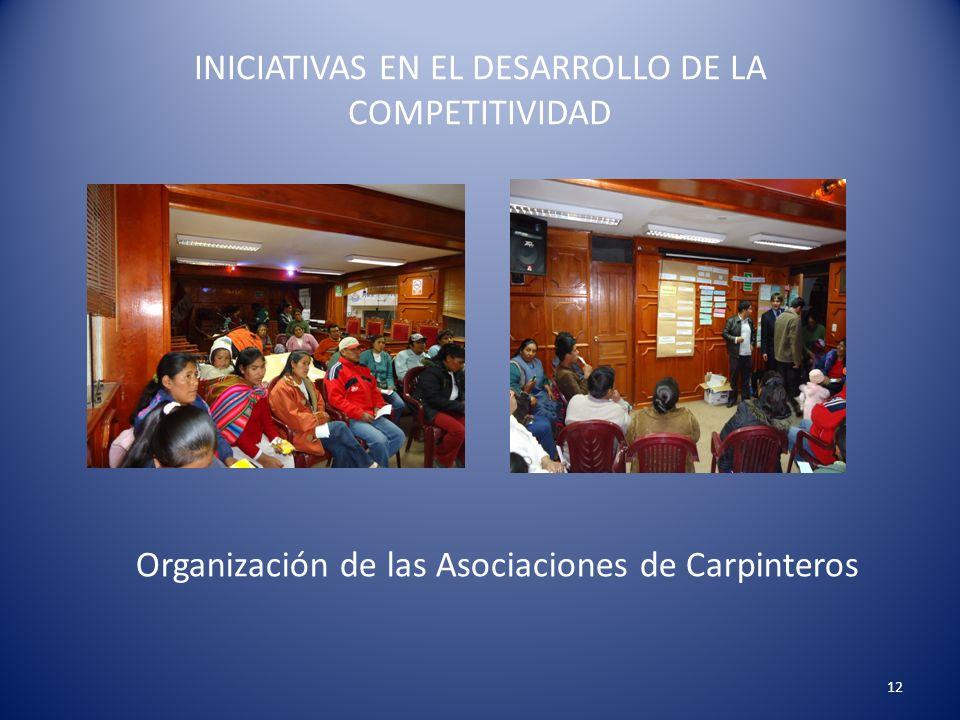INICIATIVAS EN EL DESARROLLO DE LA COMPETITIVIDAD 12 Organización de las Asociaciones de Carpinteros