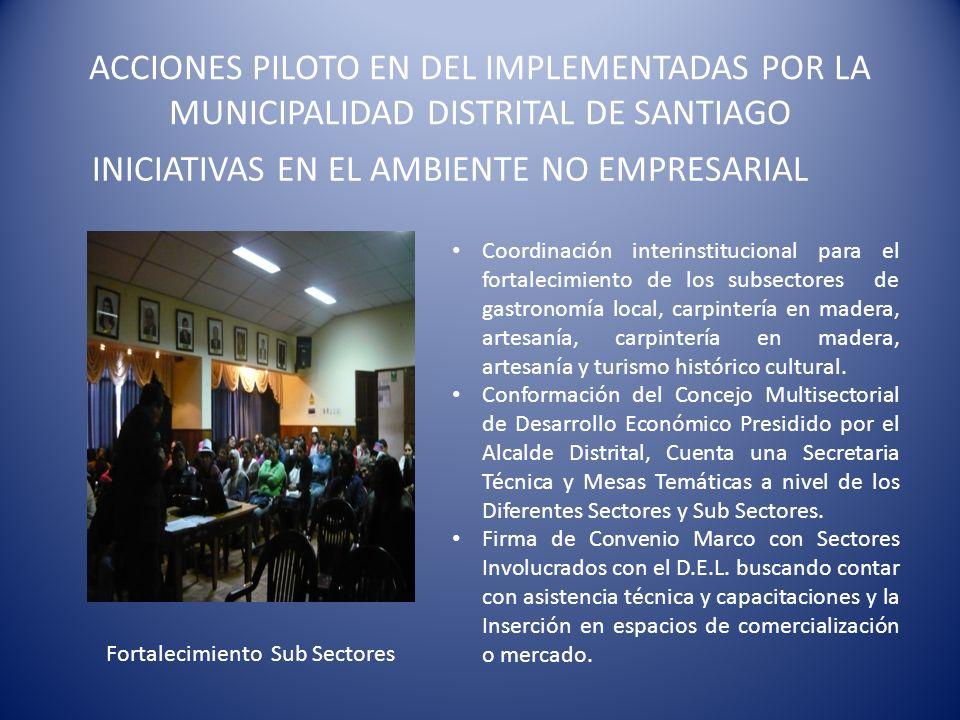 ACCIONES PILOTO EN DEL IMPLEMENTADAS POR LA MUNICIPALIDAD DISTRITAL DE SANTIAGO INICIATIVAS EN EL AMBIENTE NO EMPRESARIAL Fortalecimiento Sub Sectores