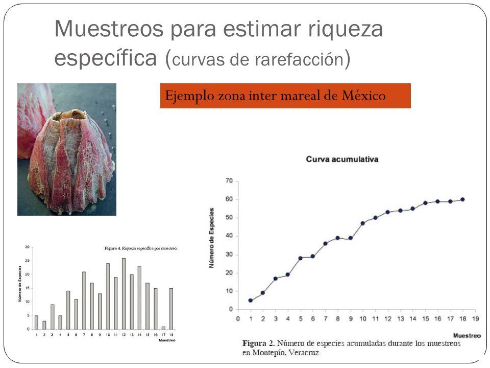 Muestreos para estimar riqueza específica ( curvas de rarefacción ) Ejemplo zona inter mareal de México