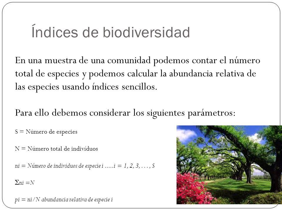 Índices de biodiversidad En una muestra de una comunidad podemos contar el número total de especies y podemos calcular la abundancia relativa de las especies usando índices sencillos.