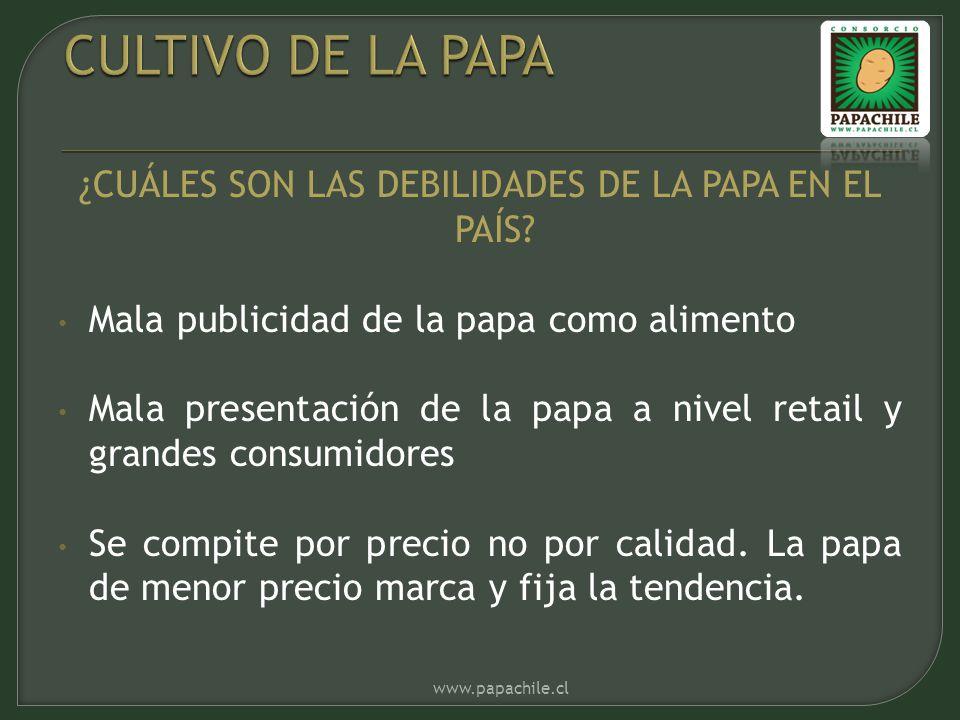 ¿CUÁLES SON LAS DEBILIDADES DE LA PAPA EN EL PAÍS? Mala publicidad de la papa como alimento Mala presentación de la papa a nivel retail y grandes cons