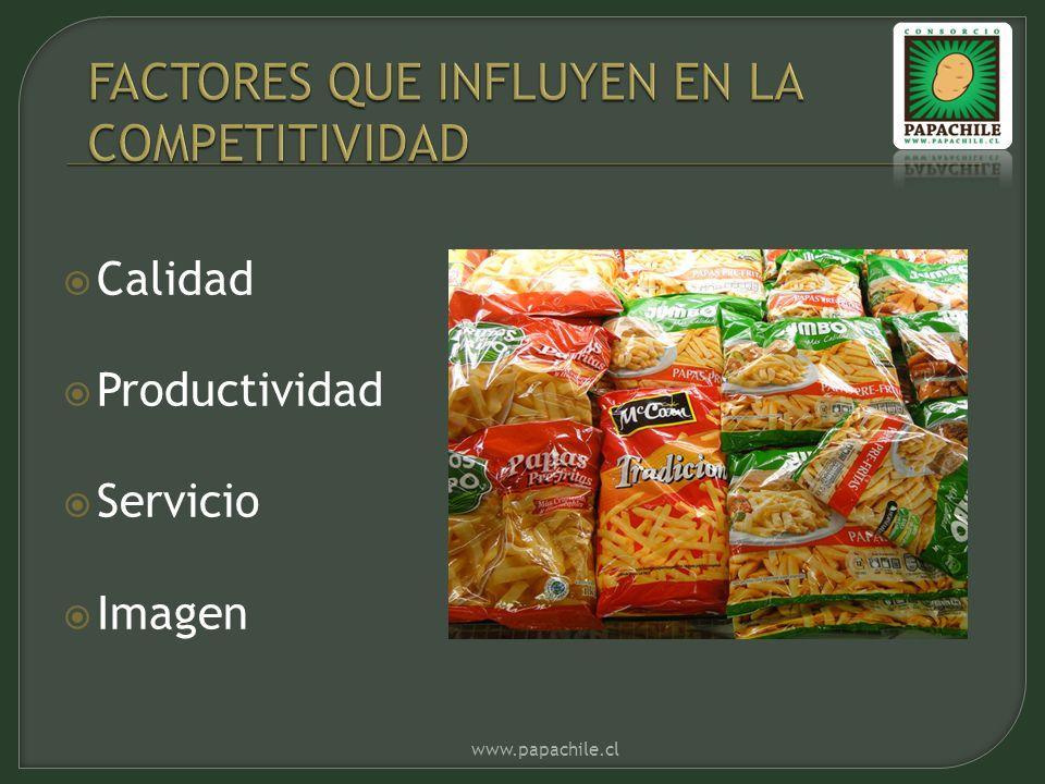 Calidad Productividad Servicio Imagen www.papachile.cl