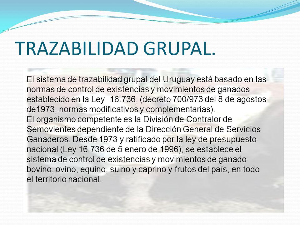 TRAZABILIDAD GRUPAL. El sistema de trazabilidad grupal del Uruguay está basado en las normas de control de existencias y movimientos de ganados establ