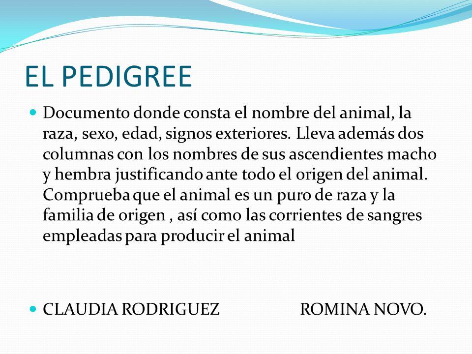 EL PEDIGREE Documento donde consta el nombre del animal, la raza, sexo, edad, signos exteriores. Lleva además dos columnas con los nombres de sus asce