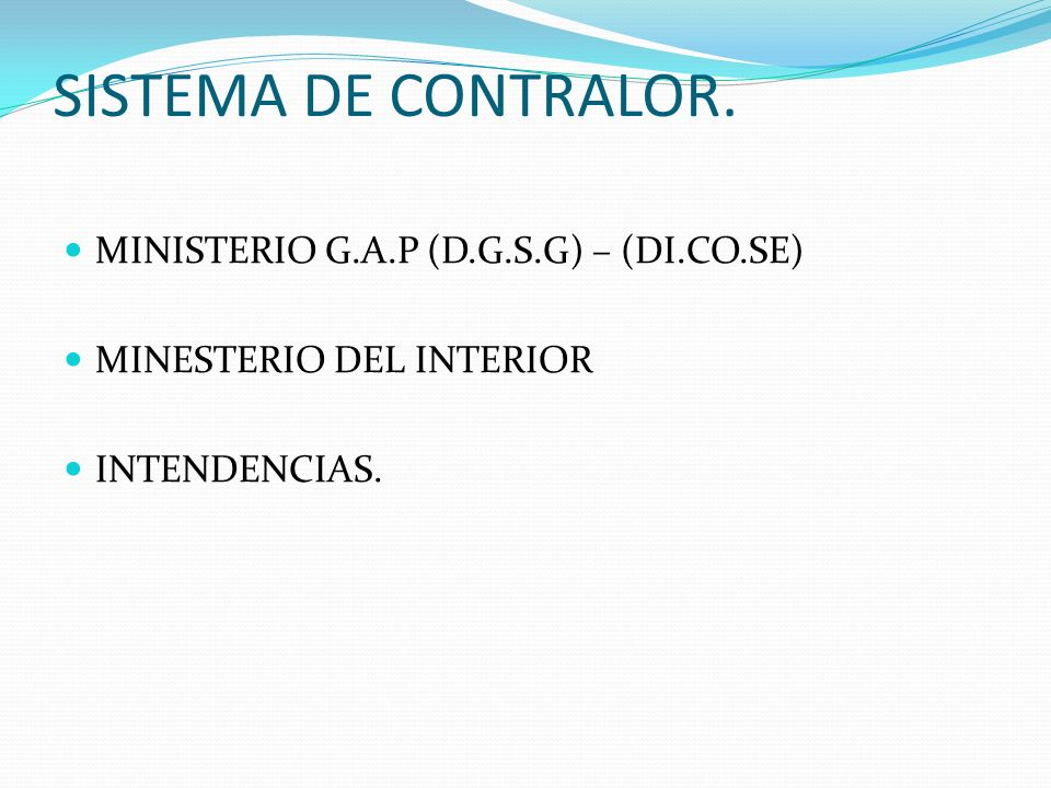 SISTEMA DE CONTRALOR. MINISTERIO G.A.P (D.G.S.G) – (DI.CO.SE) MINESTERIO DEL INTERIOR INTENDENCIAS.