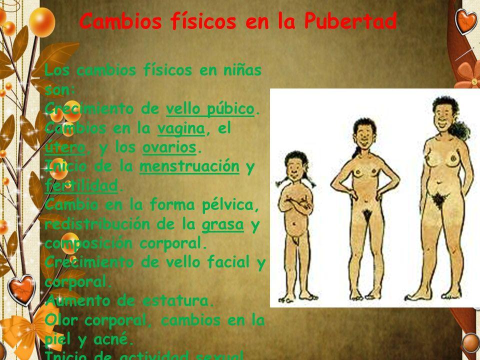 Pubertad en el hombre o masculina En el comienzo de la pubertad en el niño se producen los siguientes cambios: Desarrollo de la musculatura.
