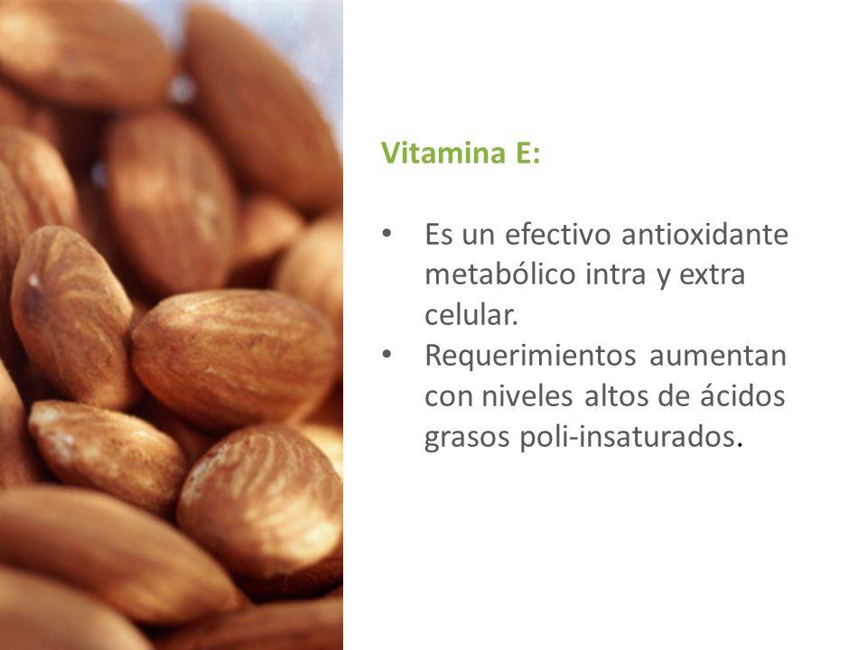 Vitamina E: Es un efectivo antioxidante metabólico intra y extra celular.