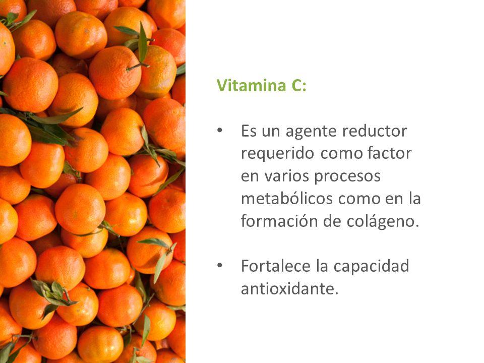 Vitamina C: Es un agente reductor requerido como factor en varios procesos metabólicos como en la formación de colágeno.