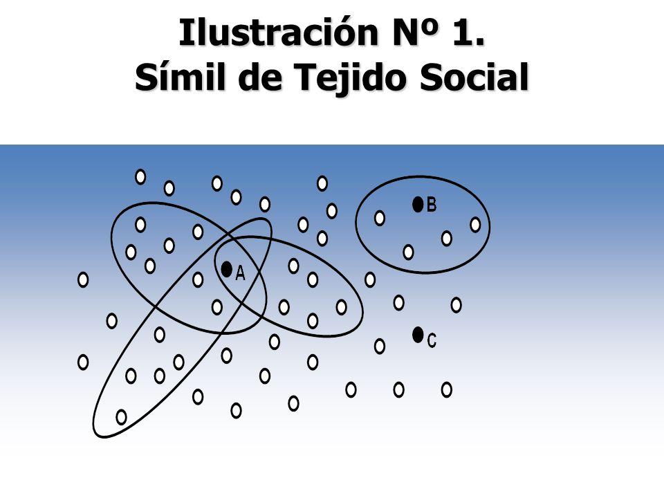Ilustración Nº 1. Símil de Tejido Social