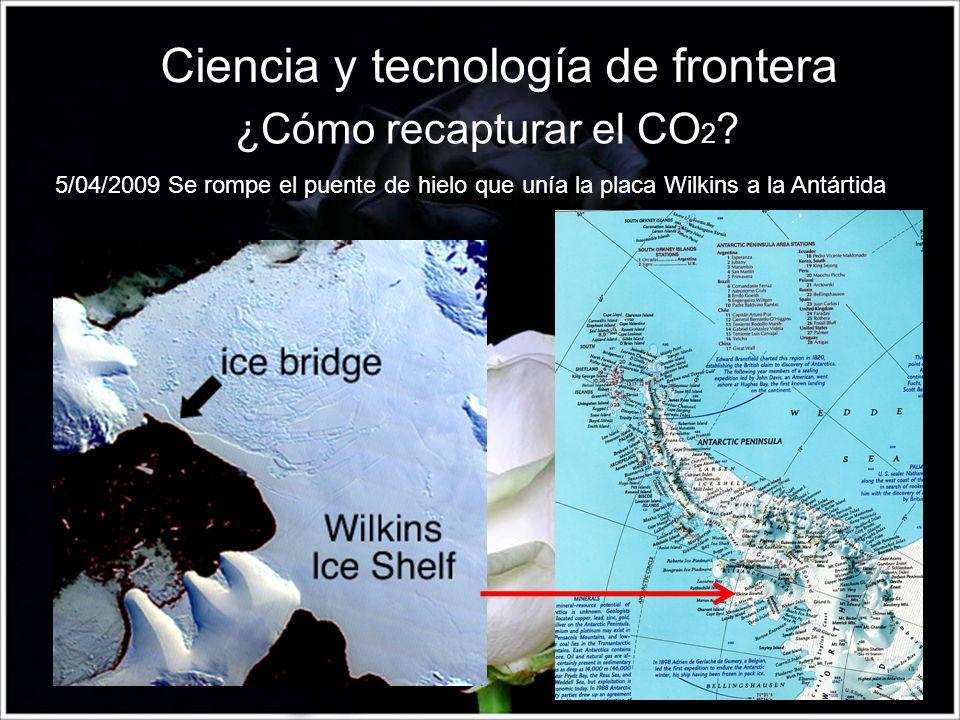 Ciencia y tecnología de frontera 5/04/2009 Se rompe el puente de hielo que unía la placa Wilkins a la Antártida ¿Cómo recapturar el CO 2 ?