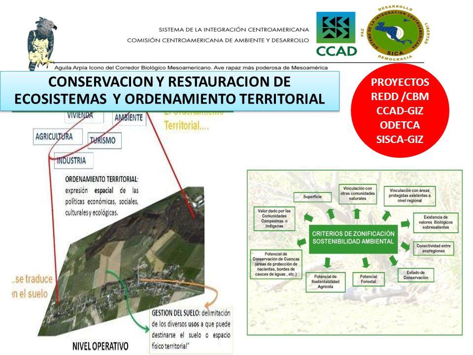 PROYECTOS REDD /CBM CCAD-GIZ ODETCA SISCA-GIZ CONSERVACION Y RESTAURACION DE ECOSISTEMAS Y ORDENAMIENTO TERRITORIAL