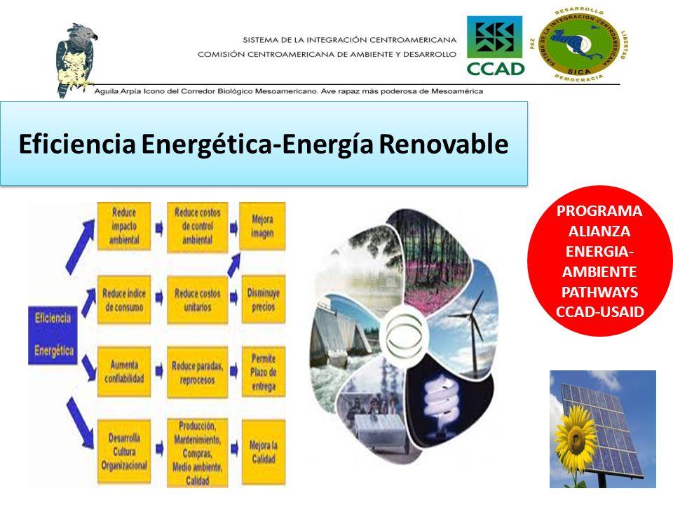 Eficiencia Energética-Energía Renovable PROGRAMA ALIANZA ENERGIA- AMBIENTE PATHWAYS CCAD-USAID