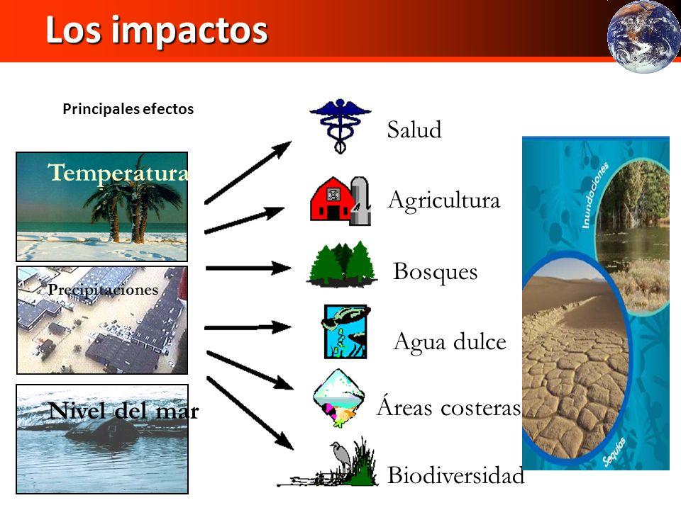 Bosques Agua dulce Salud Agricultura Los impactos Los impactos Áreas costeras Principales efectos Temperatura Precipitaciones Nivel del mar Biodiversi