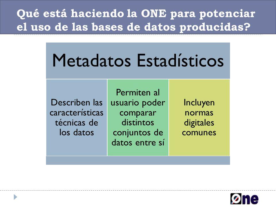 Qué está haciendo la ONE para potenciar el uso de las bases de datos producidas? Metadatos Estadísticos Describen las características técnicas de los