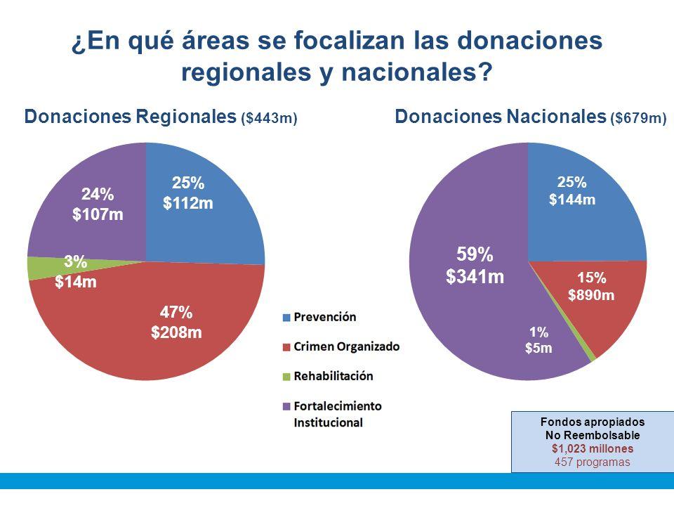 ¿En qué áreas se focalizan las donaciones regionales y nacionales.