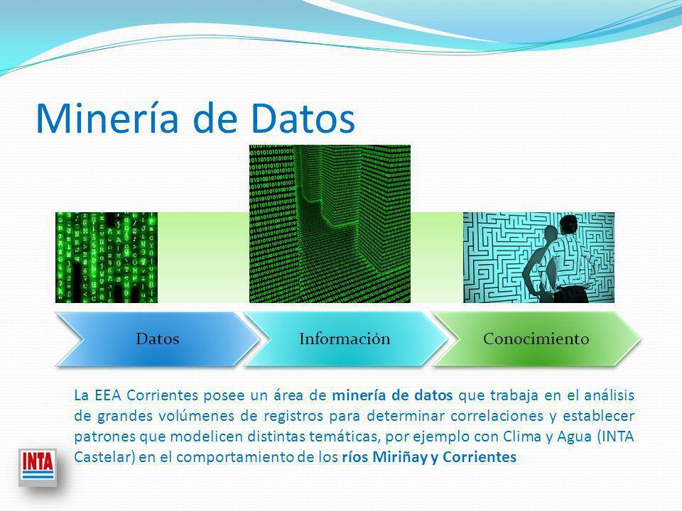 Minería de Datos Datos Información Conocimiento La EEA Corrientes posee un área de minería de datos que trabaja en el análisis de grandes volúmenes de registros para determinar correlaciones y establecer patrones que modelicen distintas temáticas, por ejemplo con Clima y Agua (INTA Castelar) en el comportamiento de los ríos Miriñay y Corrientes