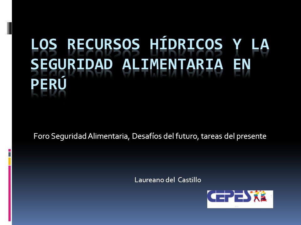 Foro Seguridad Alimentaria, Desafíos del futuro, tareas del presente Laureano del Castillo
