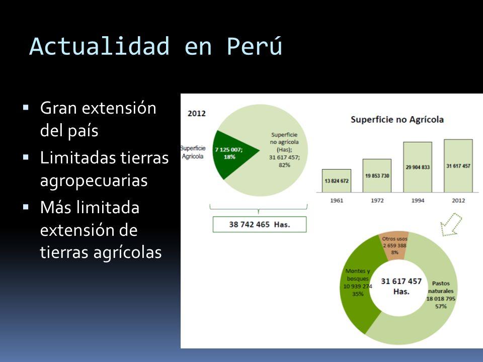 Actualidad en Perú Gran extensión del país Limitadas tierras agropecuarias Más limitada extensión de tierras agrícolas
