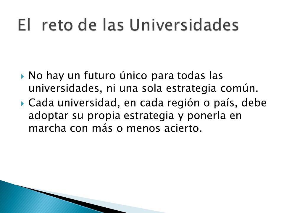 No hay un futuro único para todas las universidades, ni una sola estrategia común. Cada universidad, en cada región o país, debe adoptar su propia est