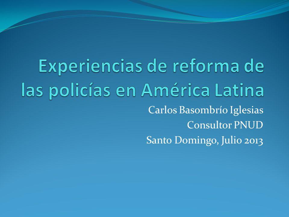 Carlos Basombrío Iglesias Consultor PNUD Santo Domingo, Julio 2013