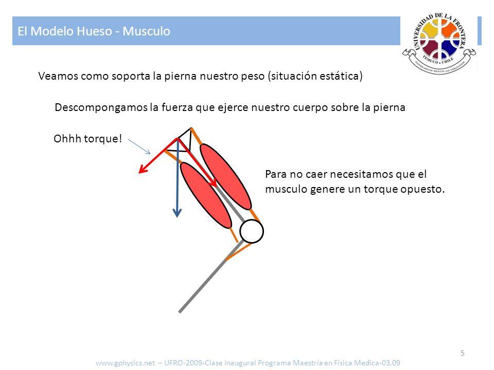 El Modelo Hueso - Musculo 5 www.gphysics.net – UFRO-2009-Clase Inaugural Programa Maestría en Física Medica-03.09 Veamos como soporta la pierna nuestr
