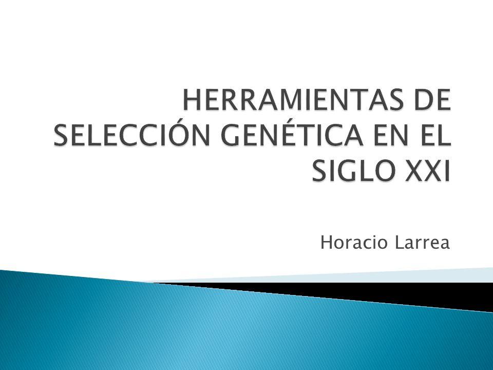 Horacio Larrea