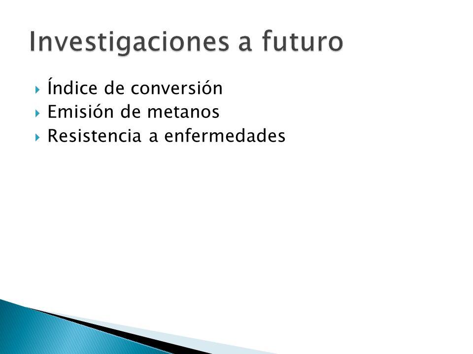 Índice de conversión Emisión de metanos Resistencia a enfermedades