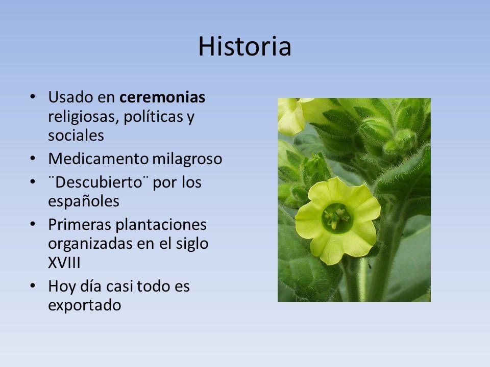 Historia Usado en ceremonias religiosas, políticas y sociales Medicamento milagroso ¨Descubierto¨ por los españoles Primeras plantaciones organizadas