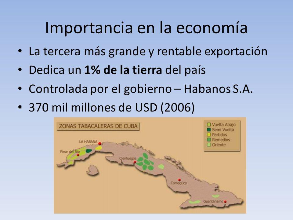 Importancia en la economía La tercera más grande y rentable exportación Dedica un 1% de la tierra del país Controlada por el gobierno – Habanos S.A. 3