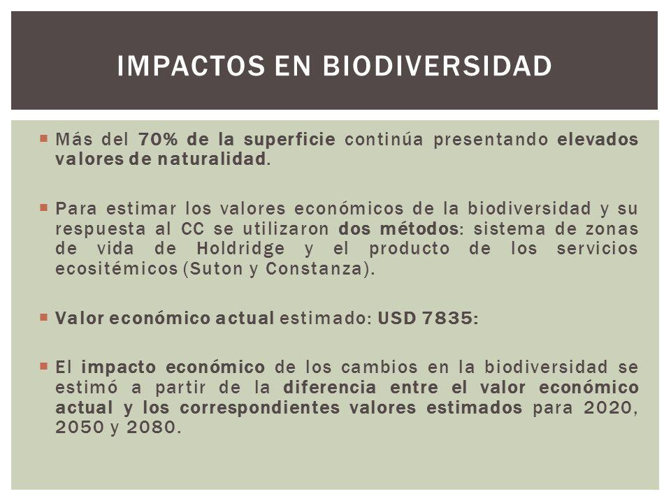 Más del 70% de la superficie continúa presentando elevados valores de naturalidad. Para estimar los valores económicos de la biodiversidad y su respue
