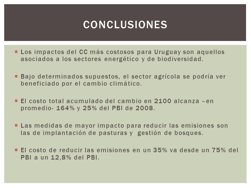 Los impactos del CC más costosos para Uruguay son aquellos asociados a los sectores energético y de biodiversidad. Bajo determinados supuestos, el sec