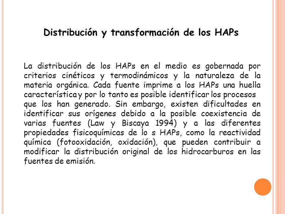 Un aspecto de interés para comprender la actividad biológica de los HAP es su metabolismo, es decir, la serie de transformaciones que sufren una vez absorbidos por el organismo.