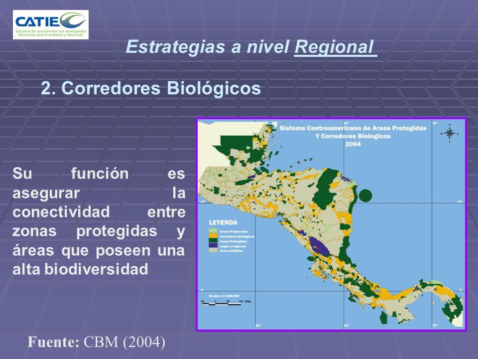 2. Corredores Biológicos Estrategias a nivel Regional Su función es asegurar la conectividad entre zonas protegidas y áreas que poseen una alta biodiv