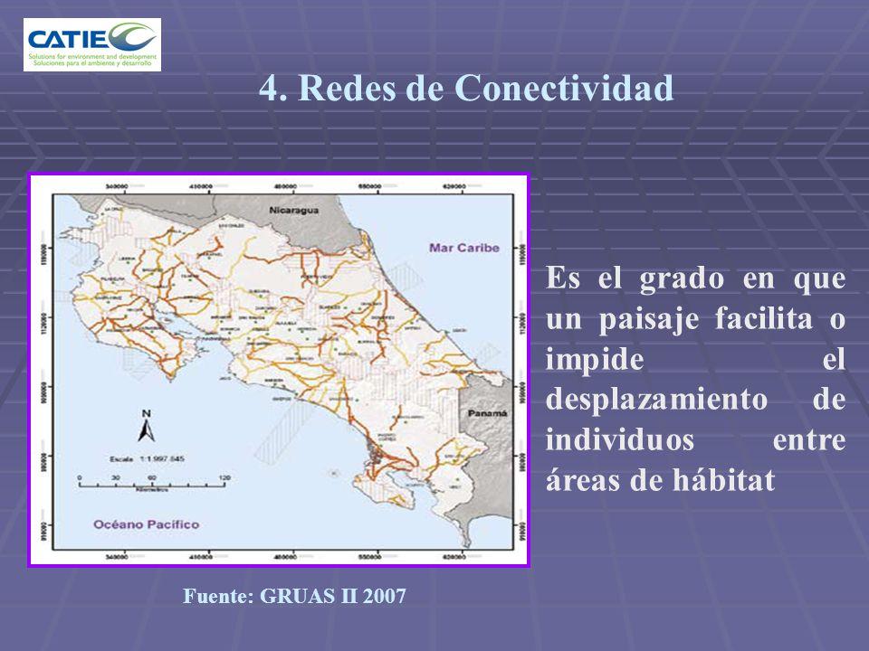 Es el grado en que un paisaje facilita o impide el desplazamiento de individuos entre áreas de hábitat 4. Redes de Conectividad Fuente: GRUAS II 2007