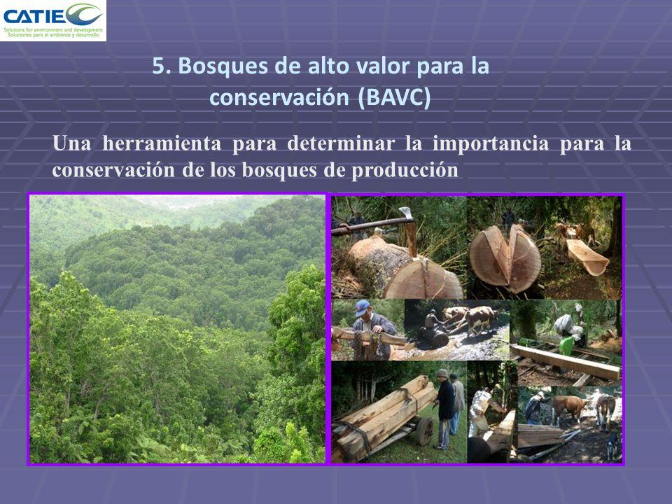 Una herramienta para determinar la importancia para la conservación de los bosques de producción 5. Bosques de alto valor para la conservación (BAVC)