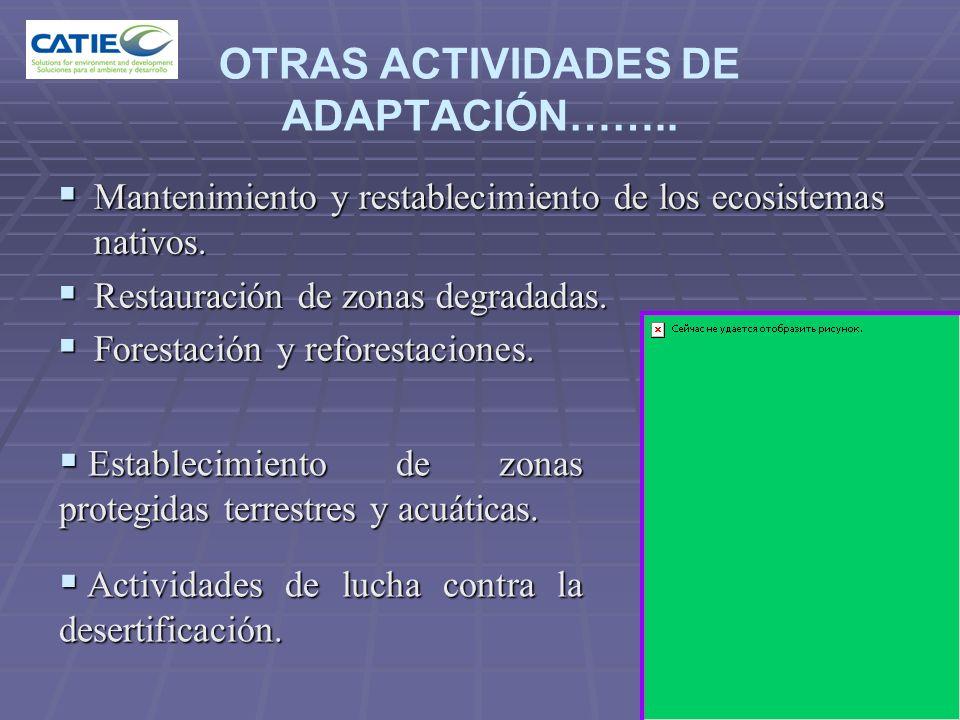 OTRAS ACTIVIDADES DE ADAPTACIÓN…….. Mantenimiento y restablecimiento de los ecosistemas nativos. Mantenimiento y restablecimiento de los ecosistemas n