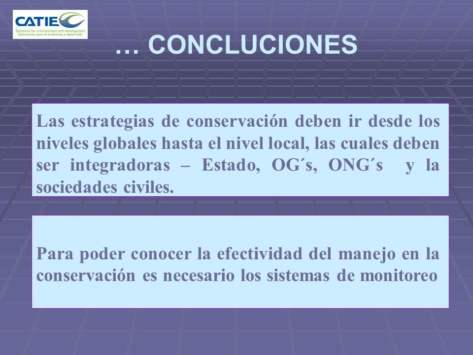 … CONCLUCIONES Las estrategias de conservación deben ir desde los niveles globales hasta el nivel local, las cuales deben ser integradoras – Estado, O