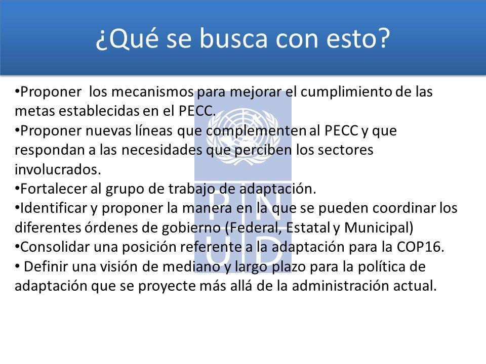 ¿Qué se busca con esto? Proponer los mecanismos para mejorar el cumplimiento de las metas establecidas en el PECC. Proponer nuevas líneas que compleme