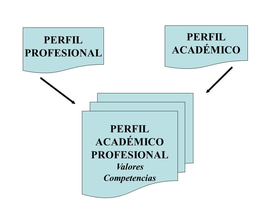 PERFIL PROFESIONAL PERFIL ACADÉMICO PERFIL ACADÉMICO PROFESIONAL Valores Competencias