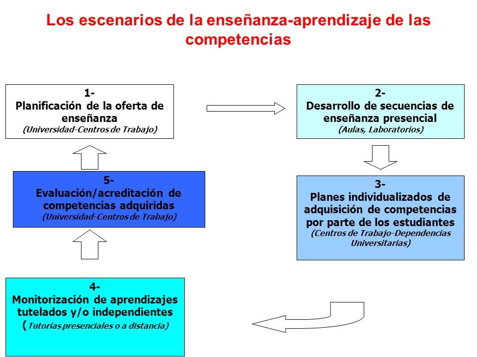 1- Planificación de la oferta de enseñanza (Universidad-Centros de Trabajo) 2- Desarrollo de secuencias de enseñanza presencial (Aulas, Laboratorios) 3- Planes individualizados de adquisición de competencias por parte de los estudiantes (Centros de Trabajo-Dependencias Universitarias) 4- Monitorización de aprendizajes tutelados y/o independientes ( Tutorías presenciales o a distancia) 5- Evaluación/acreditación de competencias adquiridas (Universidad-Centros de Trabajo) Los escenarios de la enseñanza-aprendizaje de las competencias