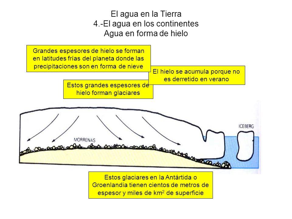 El agua en la Tierra 4.-El agua en los continentes Agua en forma de hielo Estos glaciares en la Antártida o Groenlandia tienen cientos de metros de espesor y miles de km 2 de superficie Estos grandes espesores de hielo forman glaciares El hielo se acumula porque no es derretido en verano Grandes espesores de hielo se forman en latitudes frías del planeta donde las precipitaciones son en forma de nieve