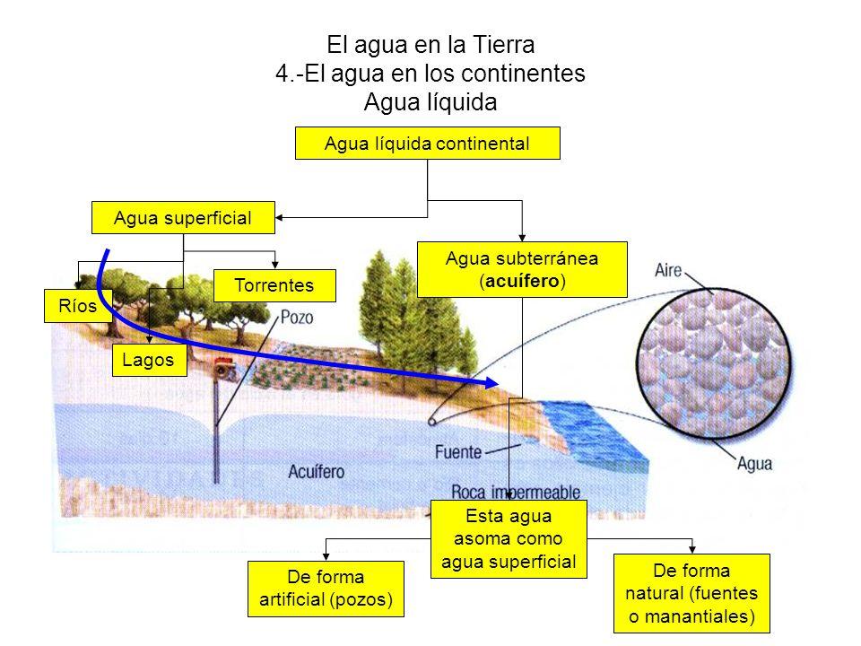 El agua en la Tierra 4.-El agua en los continentes Agua líquida Agua líquida continental Agua subterránea (acuífero) Agua superficial Lagos Ríos Torre