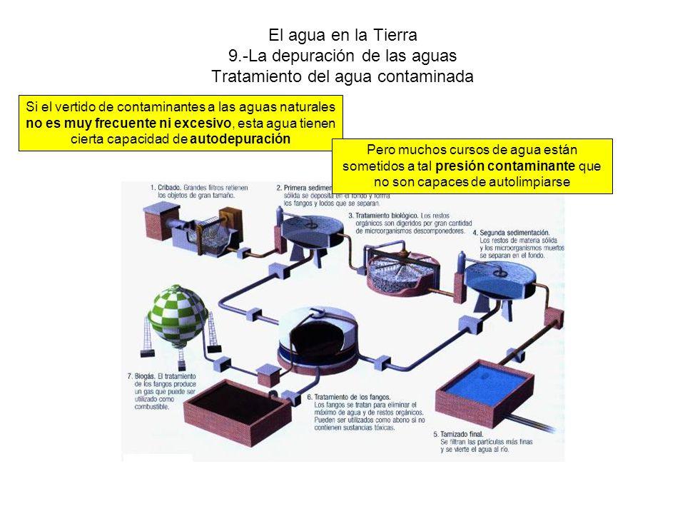El agua en la Tierra 9.-La depuración de las aguas Tratamiento del agua contaminada Si el vertido de contaminantes a las aguas naturales no es muy frecuente ni excesivo, esta agua tienen cierta capacidad de autodepuración Pero muchos cursos de agua están sometidos a tal presión contaminante que no son capaces de autolimpiarse