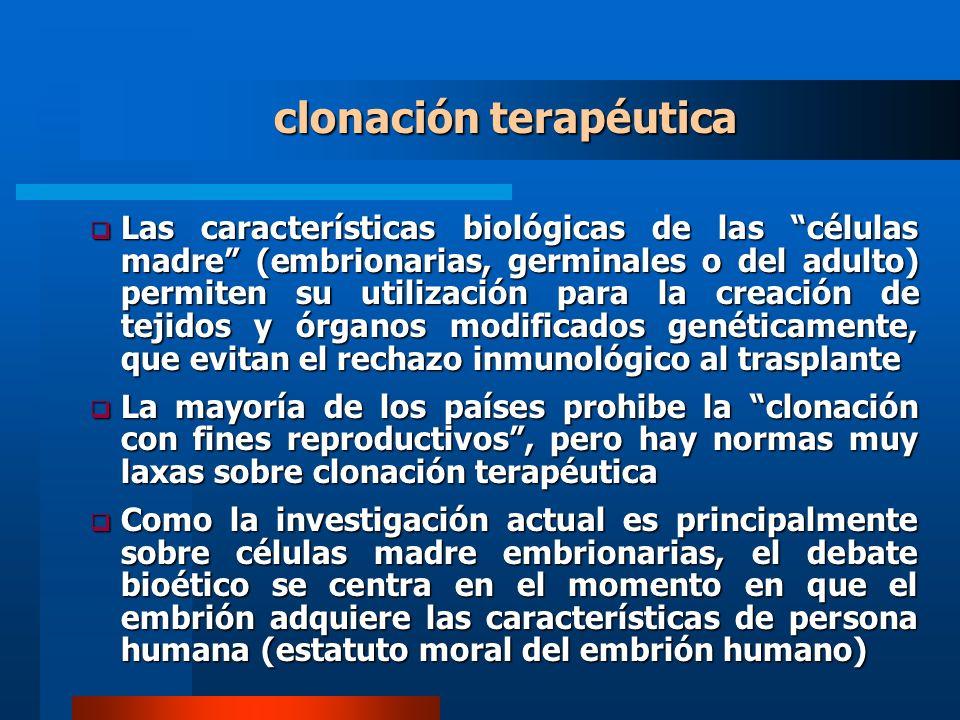 clonación terapéutica Las características biológicas de las células madre (embrionarias, germinales o del adulto) permiten su utilización para la creación de tejidos y órganos modificados genéticamente, que evitan el rechazo inmunológico al trasplante Las características biológicas de las células madre (embrionarias, germinales o del adulto) permiten su utilización para la creación de tejidos y órganos modificados genéticamente, que evitan el rechazo inmunológico al trasplante La mayoría de los países prohibe la clonación con fines reproductivos, pero hay normas muy laxas sobre clonación terapéutica La mayoría de los países prohibe la clonación con fines reproductivos, pero hay normas muy laxas sobre clonación terapéutica Como la investigación actual es principalmente sobre células madre embrionarias, el debate bioético se centra en el momento en que el embrión adquiere las características de persona humana (estatuto moral del embrión humano) Como la investigación actual es principalmente sobre células madre embrionarias, el debate bioético se centra en el momento en que el embrión adquiere las características de persona humana (estatuto moral del embrión humano)