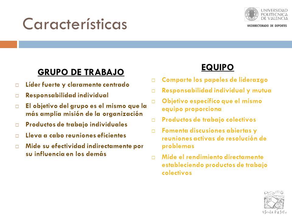 Características GRUPO DE TRABAJO Líder fuerte y claramente centrado Responsabilidad individual El objetivo del grupo es el mismo que la más amplia mis