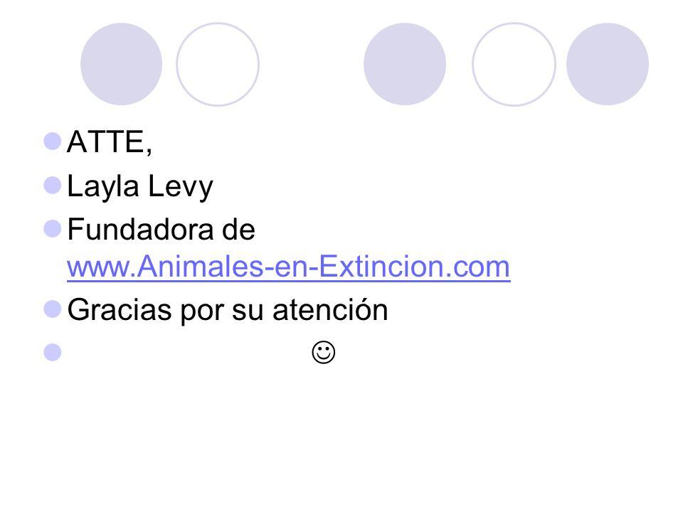ATTE, Layla Levy Fundadora de www.Animales-en-Extincion.com www.Animales-en-Extincion.com Gracias por su atención