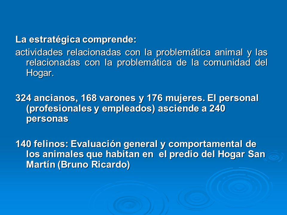 La estratégica comprende: actividades relacionadas con la problemática animal y las relacionadas con la problemática de la comunidad del Hogar.