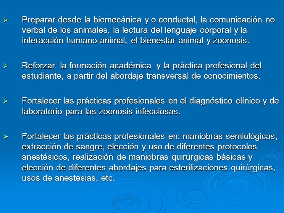 Preparar desde la biomecánica y o conductal, la comunicación no verbal de los animales, la lectura del lenguaje corporal y la interacción humano-animal, el bienestar animal y zoonosis.